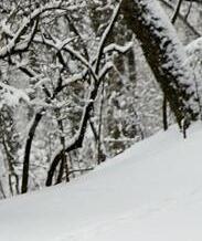 多地迎來降雪