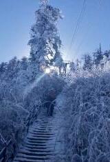 四川瓦屋山迎來今年首場雪 雪凇...