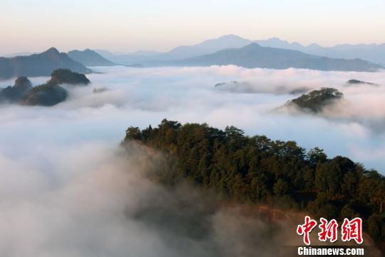10日,武夷山出現雲海景觀,雲舒雲卷,好似一幅美麗的山水畫卷。 邱汝泉 攝